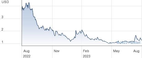 Newegg Commerce Inc performance chart